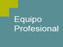 Equipo Profesional